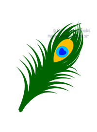 My Peacock Books feather